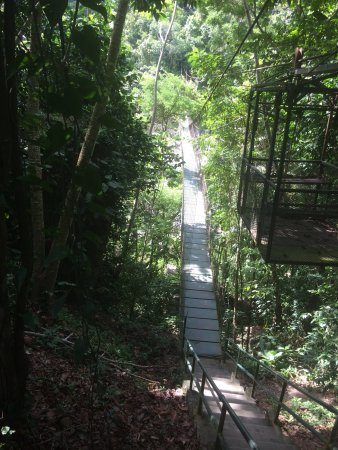 Pico Bonito National Park: Hike to pico bonito cascade