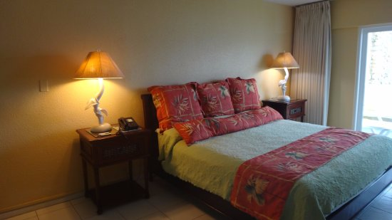 The Palms at Pelican Cove: Bed area in large room
