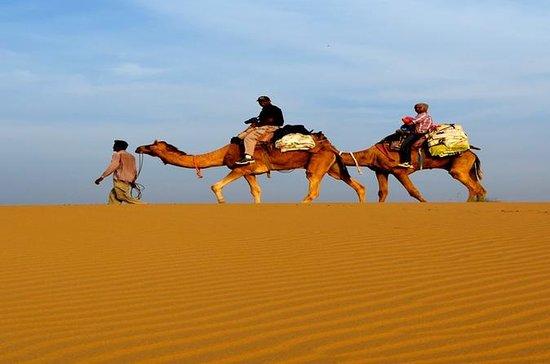 Jaisalmer 3-dagers privat tur fra...