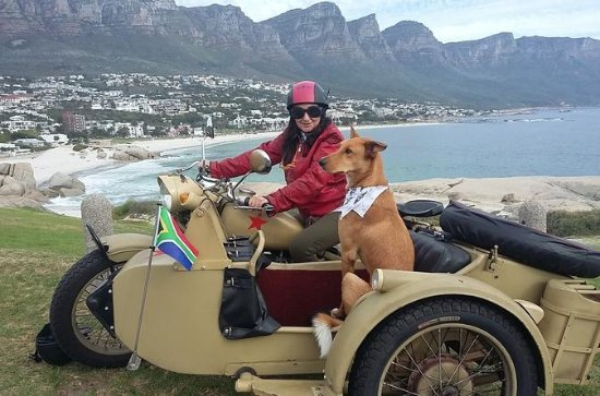 Full-Day Cape Peninsula Tour by Sidecar