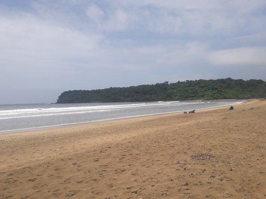 Agonda Beach : 20170831_120347_large.jpg