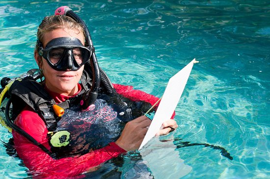 We can teach you all level of the PADI curriculum in 13 different languages