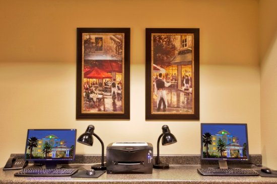 Holiday Inn Express Hotel & Suites New Tampa I-75 Bruce B. Downs: Business Center