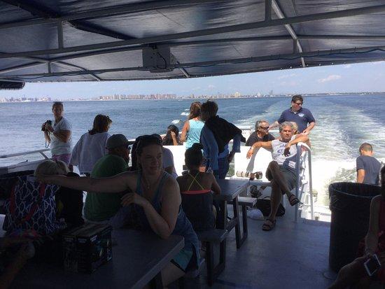 Breezy Point, Estado de Nueva York: Lounging -waiting for whales
