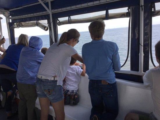 Breezy Point, Estado de Nueva York: Searching for whales