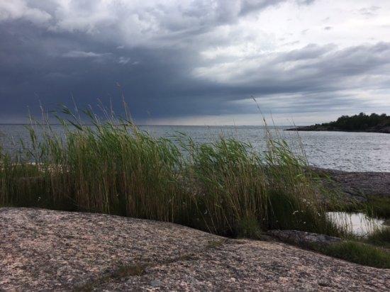 Oxelosund, Suecia: short walk for this view