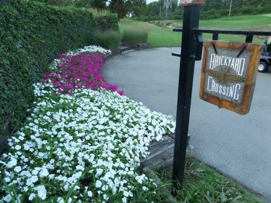 Brickyard Crossing Golf Course: 18th tee
