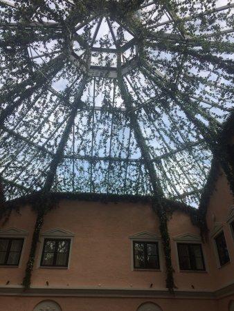 MJ's Hotel: mysig innergård