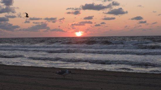 Belmar, Νιού Τζέρσεϊ: Beach at Sunrise