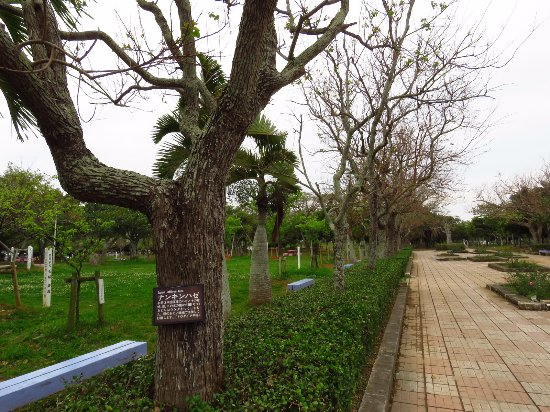 Manko Park