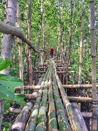 Lebak, Philippinen: bamboo bridge