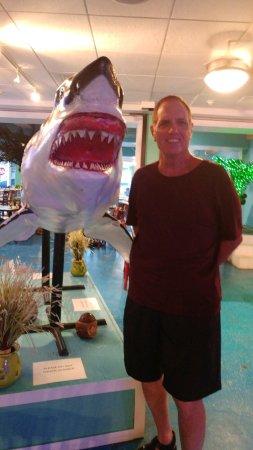 Jensen Beach, FL: Atmosphere was fun at Mulligans