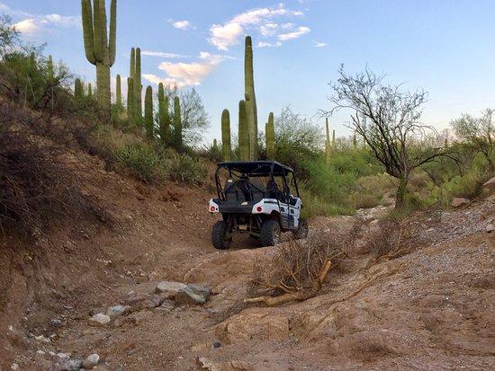 Black Canyon City, AZ: Awesome fun!