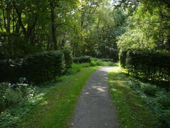 Gesundheitspark Quellenbusch: Im Park.