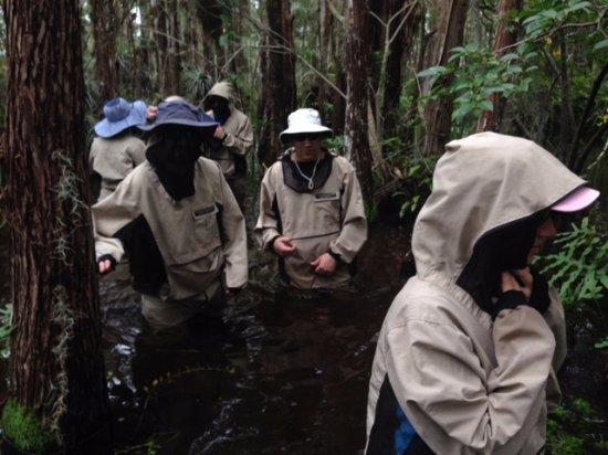 Garl's Coastal Kayaking Everglades : My Gang <3