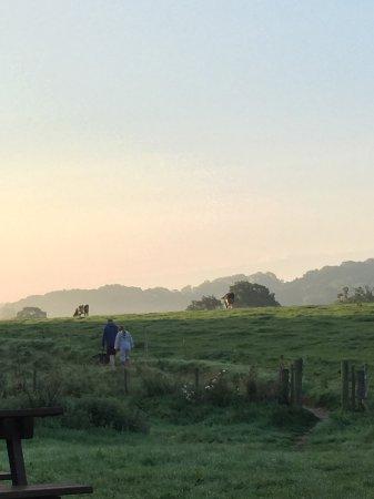 Stockland Photo