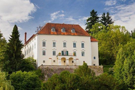 Schloss Ernegg Foto