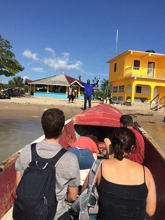 Joe Cool Taxi And Tours Jamaica Reviews