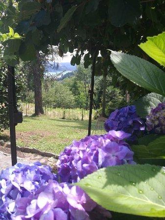 Nebbiuno, Италия: Giardino
