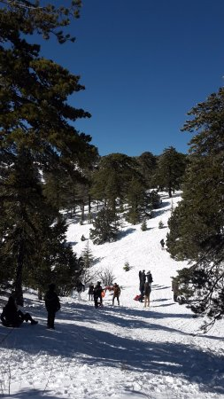 Troodos Mountains, Cyprus: Beautiful day to play in the snow.