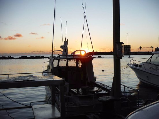 WaHoo Fishing Charters: Sunrise