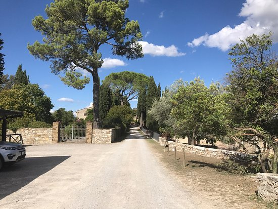 Ricavo, Italy: photo2.jpg