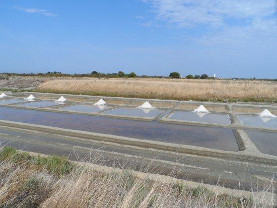 Loix, Frankrike: Ecomusée du marais salant