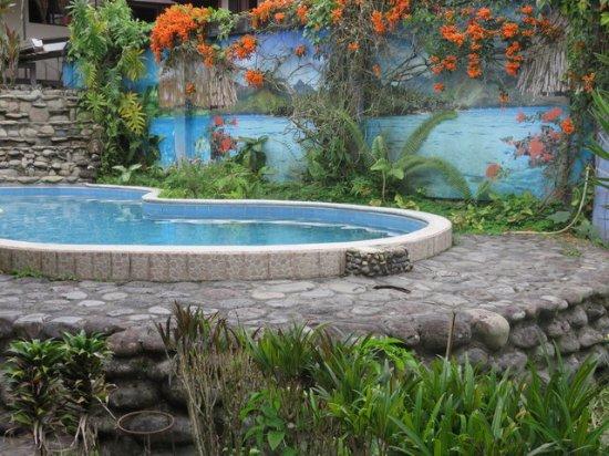 Macas, Équateur : La piscine est minuscule mais sa vue rafraichissante...