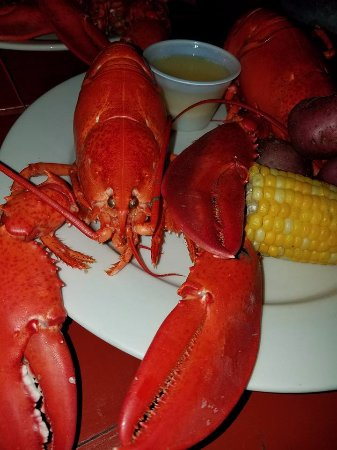 Twin lobster bake. Caught in the morning, on my plate for dinner. It tasted amazing! - Picture ...