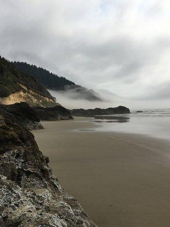 Yachats coastline 사진