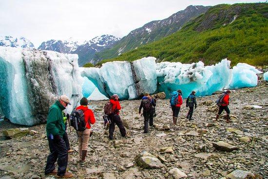 Gustavus, AK: Hiking in East Arm-Glacier Bay