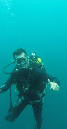 Galapagos Underwater: IMG_20170901_184814_222_large.jpg