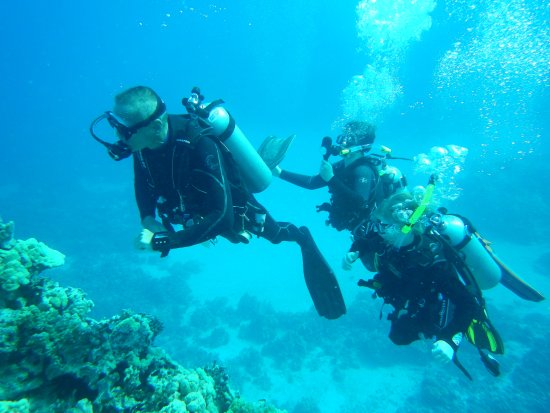 Blue Wilderness Dive Adventures: The Boys Diving with David Prutow