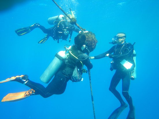 Blue Wilderness Dive Adventures: Certification Ascents