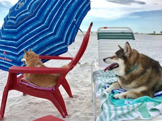 Casa Playa Resort: photo4.jpg