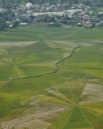 Lingko Spider Web Rice Fields - Walking Tours: IMG_20170902_085402_large.jpg