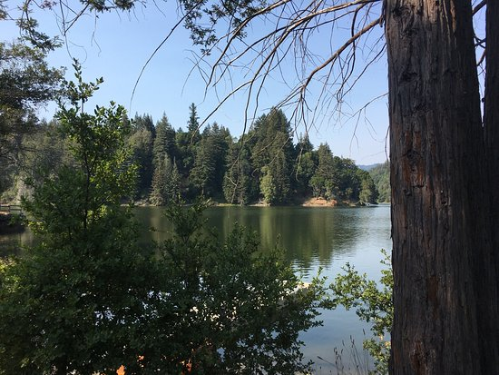 Felton, CA: Loch Lomond Recreation Area
