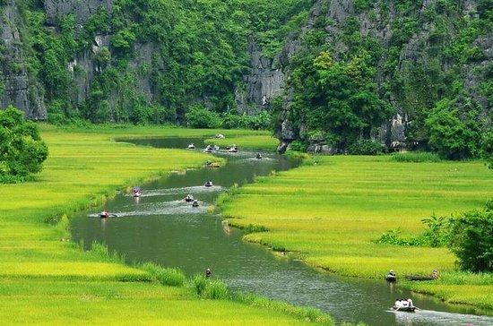 Visiting Mua Cave Hoa Lu Tam Coc Full...
