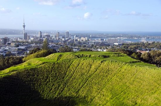 Half-day Discover Auckland City...
