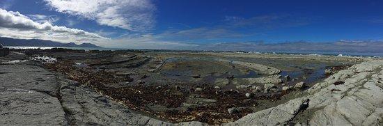 Kaikoura Peninsula Walkway: photo2.jpg