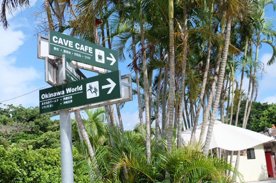 Valley of Gangala Cave Cafe : ทางเข้า