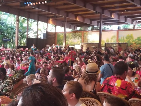 laie singles & personals Polynesian cultural center: speed dating polynesian culture - see 7,200 traveler reviews, 4,161 candid photos, and great deals for laie, hi, at tripadvisor.