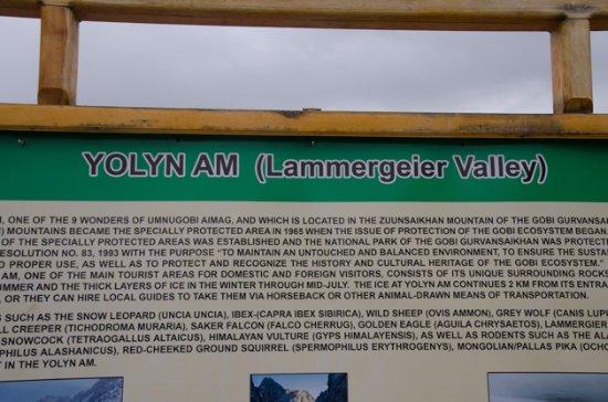 Yolyn Am
