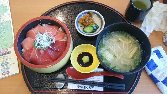 Ichikikushikino Foto