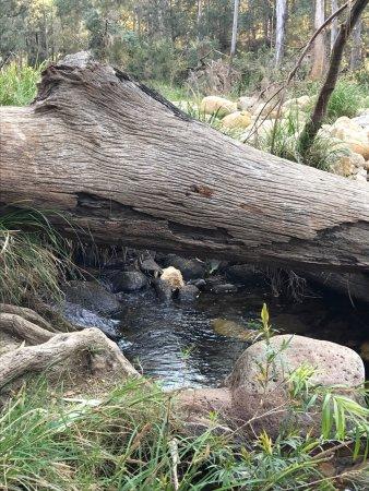 Barney View, Australia: photo1.jpg