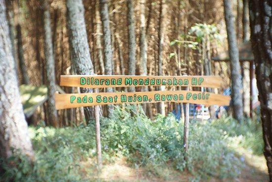 wisata alam di ketinggian melihat bandung dari atas foto bukit rh tripadvisor co id