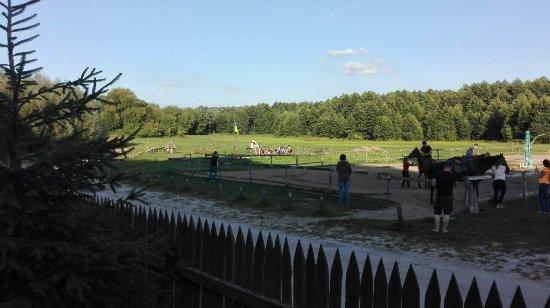Horseback Yard Sednevskiy