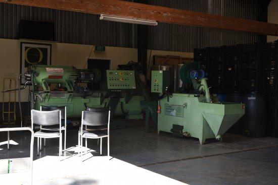 Waiheke Island, New Zealand: オリーブオイル製造機。なんとイタリア製。