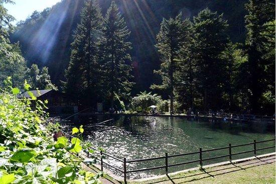 Lizzano in Belvedere, Italien: Laghetto di Pesca Sportiva Porchia