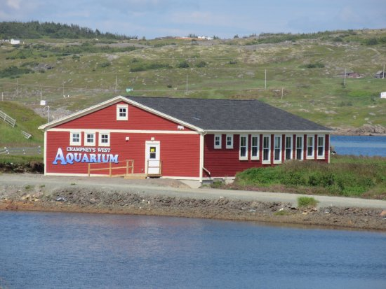 Port Rexton, Canadá: Champney's West Aquarium - 2017 is our first full season open to the public.